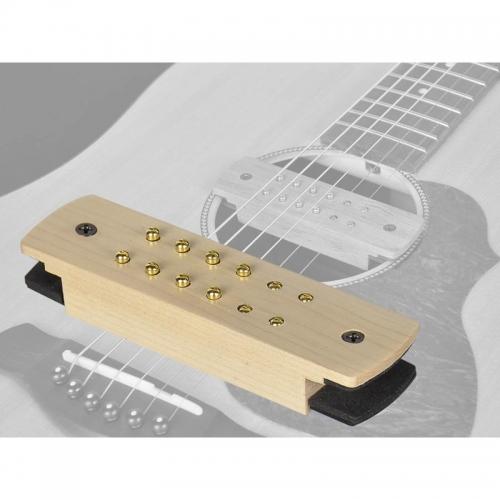 gitaarelement voor akoestische gitaar