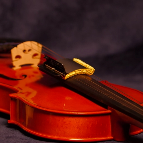 viool snarenreiniger kopen